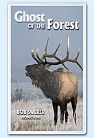 Buy Ghost of the Forest on VHS by Bob Swerer Nature Videos